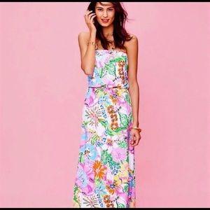 Lilly Pulitzer Nosey Posey Maxi Ruffle Dress XL